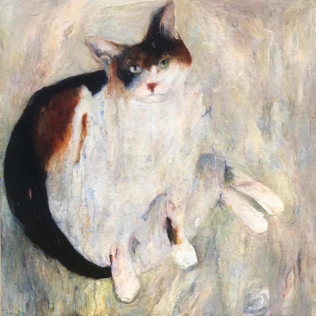 Comfort Animal Fat Cat